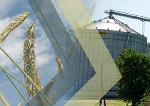 """Елеватори АПК """"НОВААГРО"""" заготовили понад 120 тис. тонн ранніх зернових"""